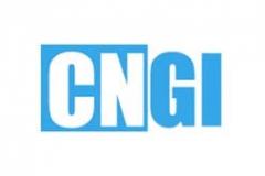 CNGI - Coordinamento NazionaleGiovani Imprenditori
